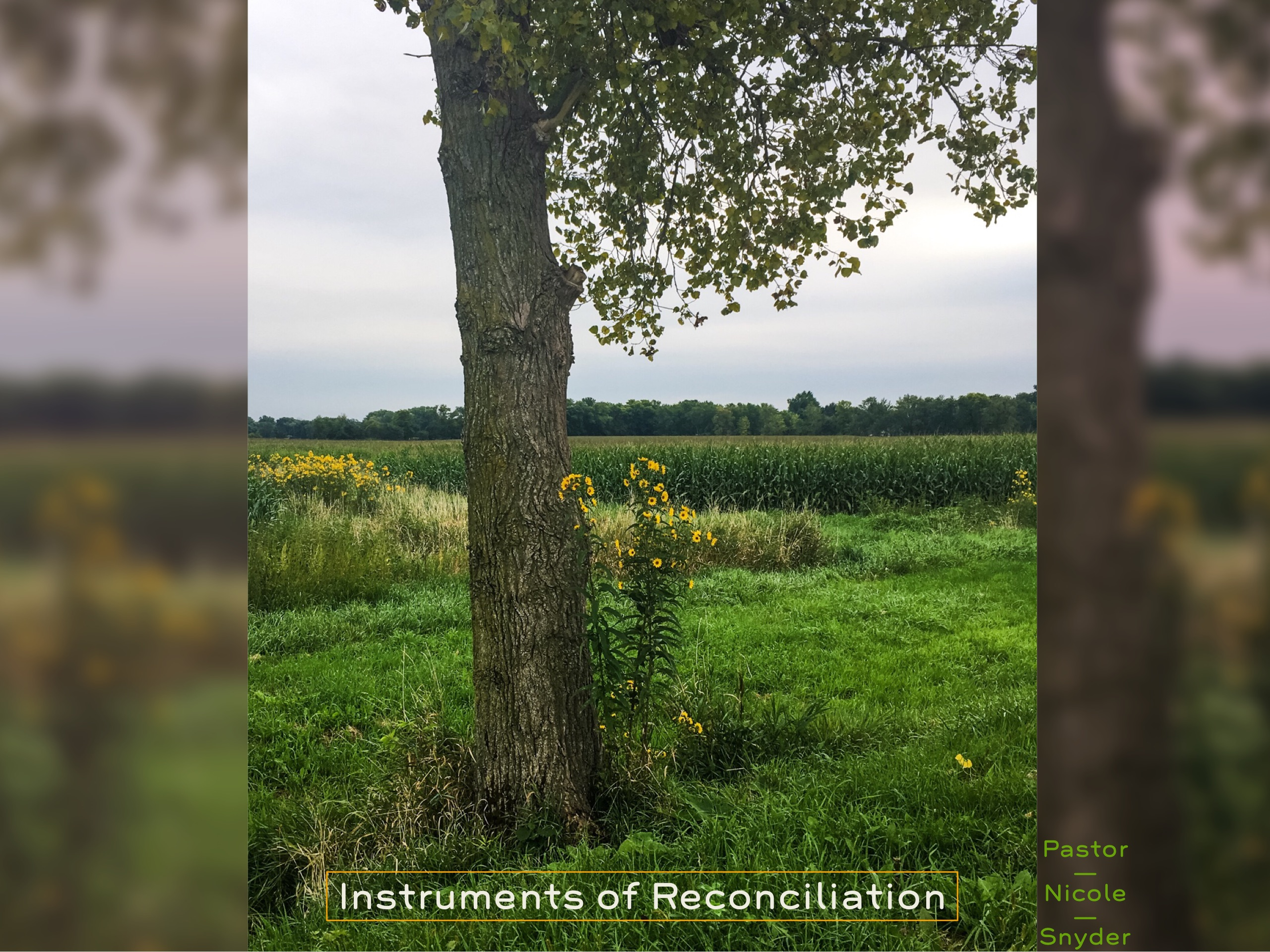 Instruments of Reconciliation