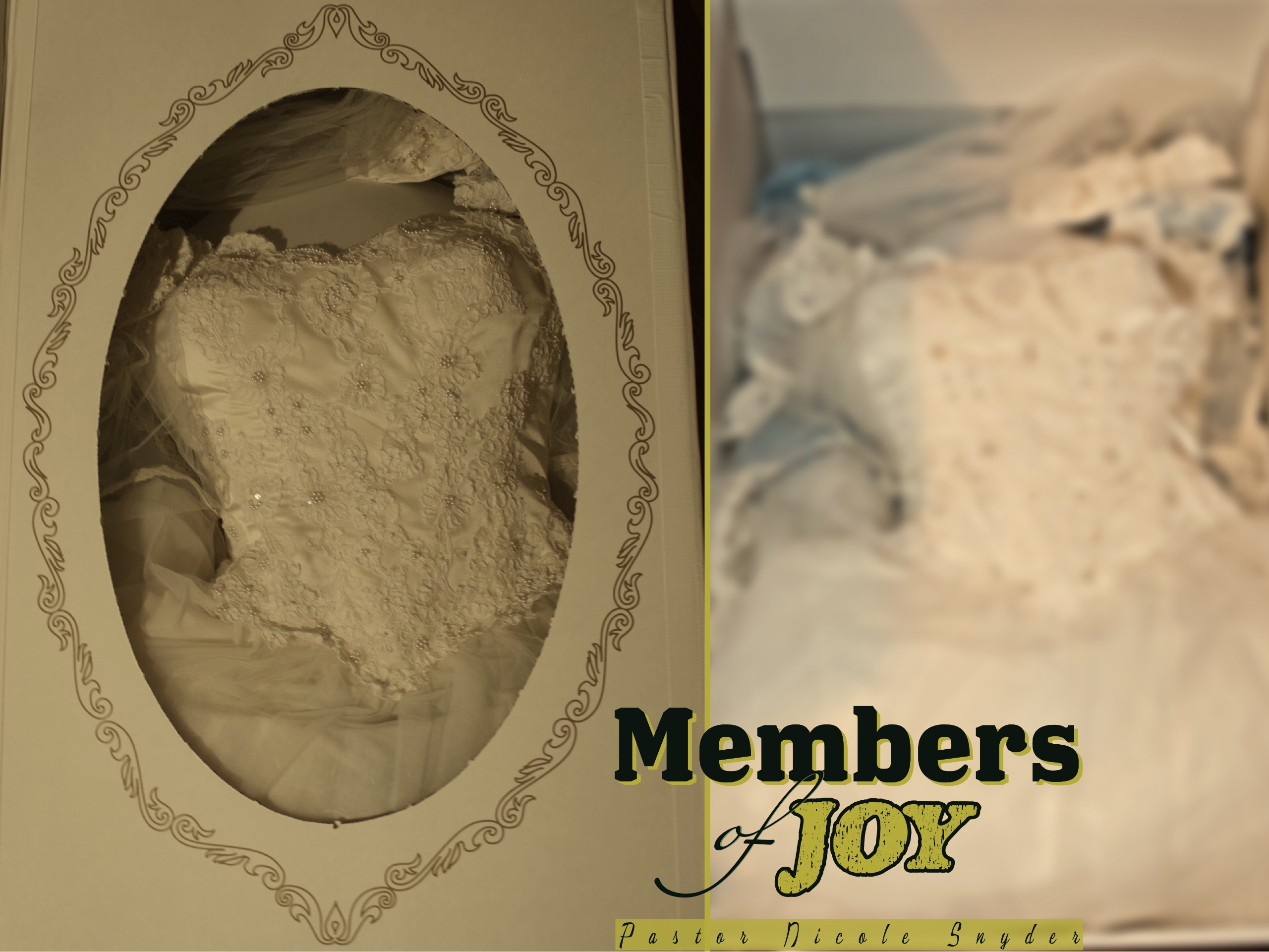 Members of Joy